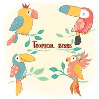 cute drawing flat vector tropical bird set, colorful summer