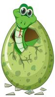 Green snake hatching egg vector