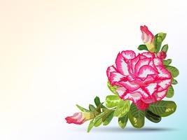 Background and label decorated with desert rose vector