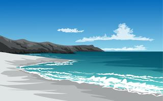 cliff beach vector