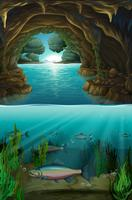 Binnen de cabe onder water