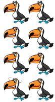 Toucan bird met verschillende emoties