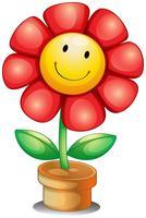 Una flor dentro de una maceta.