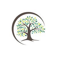 Cercle Swoosh Oak Tree Logo Modèle Illustration Design. Vecteur EPS 10.