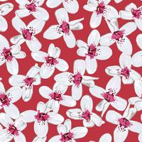 White flowers on red seamless background.