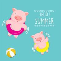 Olá Verão bonito dos desenhos animados de porco.