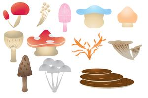 Mushroom Collection White Background