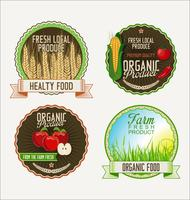Set of organic fruit retro vintage golden labels collection vector