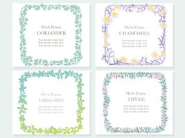 Set of four assorted frames with various herbs: coriander, chamomile, oregano, and thyme.