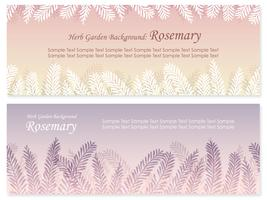 Set of two vector seamless background illustrations with rosemary.