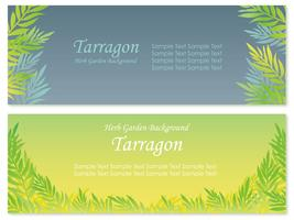 Set of two vector background illustrations with tarragon.