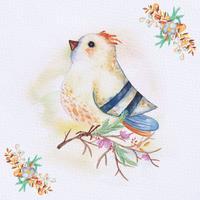 Aquarelle oiseau sur une branche