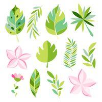 Colección tropical con flores exóticas y hojas.