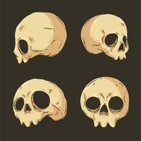 Vector de colección de cráneo dibujado a mano