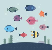 fish under the sea.