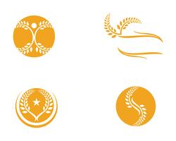 Agriculture wheat Logo Template,healthy life logo vector icon design