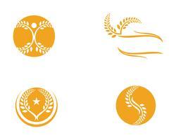 Landwirtschaftsweizen Logo Template, gesundes Lebenlogovektor-Ikonendesign