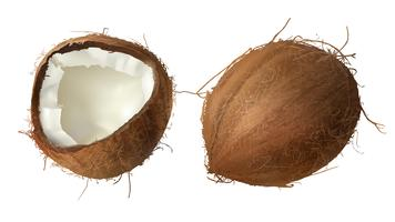 Whole and half broken coco nut