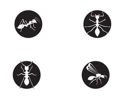 Ant Logo template vector illustration design
