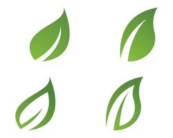 green leaf ecology nature element vector icon,