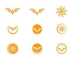 Agriculture wheat Logo Template,healthy life logo vector icon design