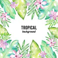 Fundo Aquarela Tropical