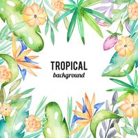 Watercolor tropical background vector