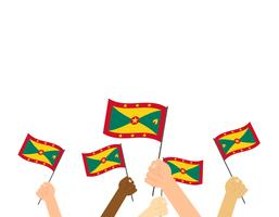 Hand holding Grenada flags isolated on white background