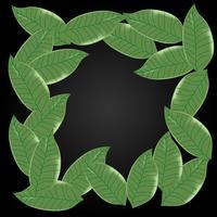 Leaf background pattern ,copy space