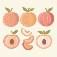 Vektor Hand gezeichnete Pfirsiche