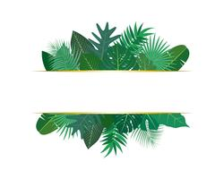 Vector illustration of various exotic green tropical leaves with banner on white background