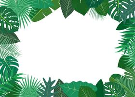 Vector illustration of frame made of green tropical leaves on white background