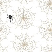 Halloween seamless pattern. Holiday background with spider, web vector