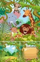 Escenas de la naturaleza con animales salvajes en la selva.
