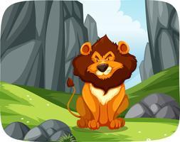 Leão na cena da natureza