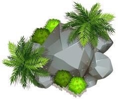 Una roca aislada de la naturaleza.