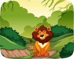 Leeuw in de natuur scène