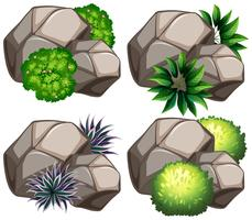 Ensemble de rocher nature