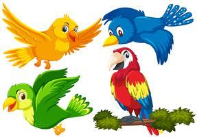 Set van vogel karakter