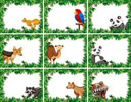 Set of animal on nature border vector