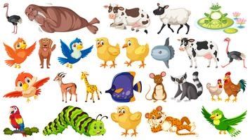 Set of animal character vector