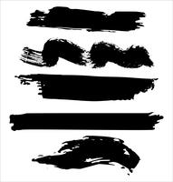 Brush strokes hand drawn vector illustration - Vector
