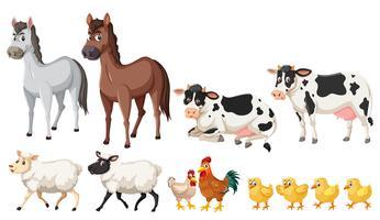 Een reeks landbouwdieren op witte achtergrond