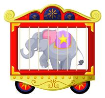 Gray elephant in the circus cage