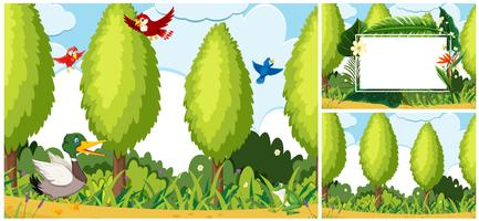 Set of nature scene vector