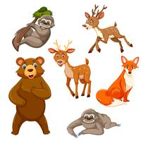 Set of exotic animals vector