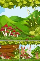 Nature scenes with rabbits in the forest vector