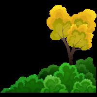 Sträucher und Baum