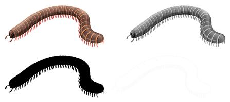 Set of millipede character
