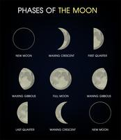 The Phases of the Moon.Print